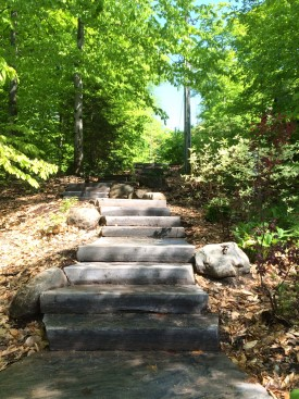 Steps, Landing and Boulder Retainment