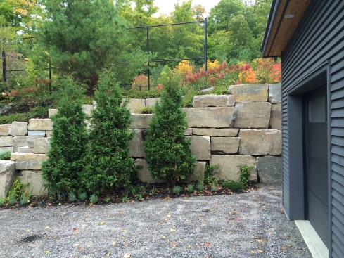 Quarry Stone wall with planting